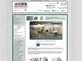 AmberDiagnostics_01