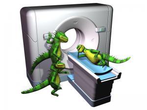 Iguana_CT